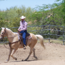 Long-live-cowboys